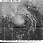 Subtropical Storm Olga (satellite image - 24 November 2001)