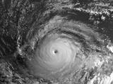 1999 ROBLOX hurricane season (HurricaneMasterYT)