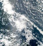 Tropical Storm Colin aug 3 2010 1645Z.jpg