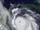 2026 Atlantic Hurricane Season ( WeatherWill )