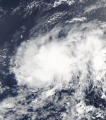 Tropical Depression 10 (2005)