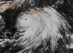Typhoon Rex 1998.jpeg