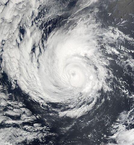 File:Hurricane Alma 2002.jpg