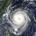 File:Typhoon Longwang 2005.jpg