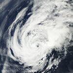 Sandy 2004.jpg