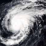 Typhoon Sonca 2005.jpg