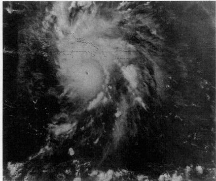 File:Hurricane Emily (1987).JPG