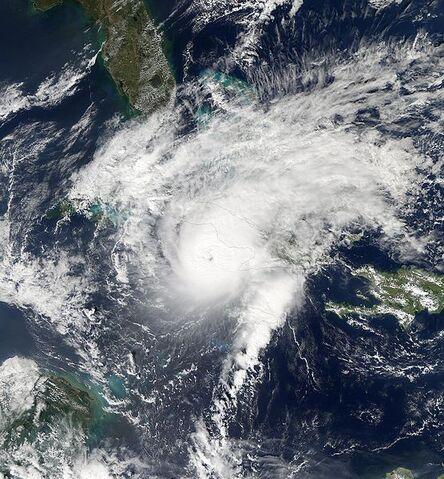 File:Paloma 2008-11-08 at 1835 UTC.jpg