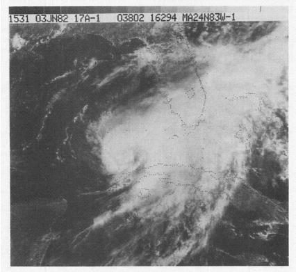 File:Hurricane Alberto (1982).jpg