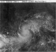 Hurricane Virgil (1992)