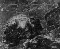 File:Tropical Storm Danielle (1980).JPG