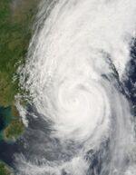 Typhoon Chanchu 17 may 2006 0315Z.jpg
