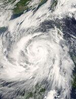 Typhoon Chanchu 14 may 2006 0245Z.jpg