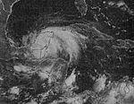 Tropical Storm Hermine (1980).jpg