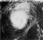 Hurricane Irene (1981)