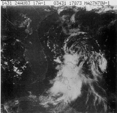 File:Tropical Storm Barry (1983).JPG