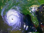 Hurricane Andrew - Louisiana - 2.JPG