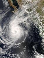 Hurricane Norbert Oct 10 2008.jpg