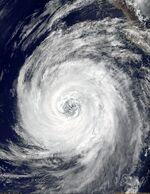 Hurricane Lane of 2000.JPG