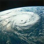 Typhoon (7)