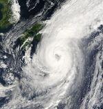 Typhoon Choi-wan 2003.jpg