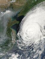 Typhoon Rusa.jpg