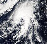 Subtropical.jpg