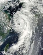 Tropical Storm Dianmu August 10,2010.jpg