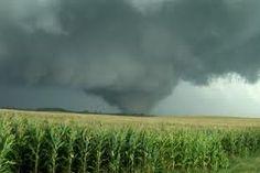 Tornado 1377.jpg