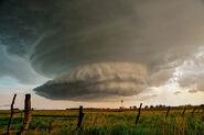 Storm 141