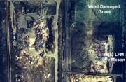 Edmonton-industrial-damage