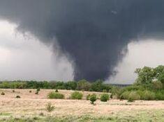 Tornado 1105