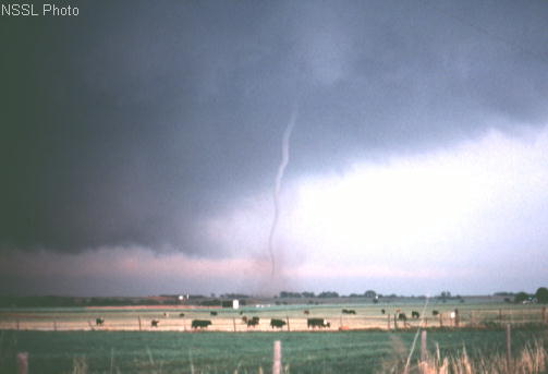 File:El Reno Oklahoma Tornado.jpg