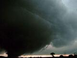 Tornadoes of 2019 (Hitman)