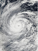Vongfong 2014.png