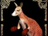 Blaino Boxer