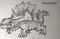 Hytale Dimetrodon
