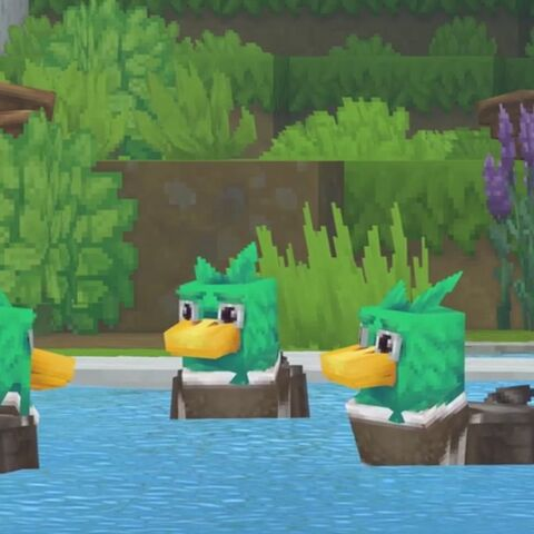 Trzy kaczki brodzą w stawie.