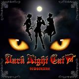 Dark Night Cat