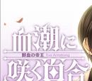 Chishio ni saku yuri