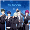 To bloom...