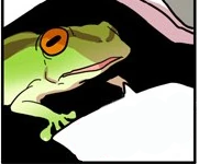 Cheongwa Frog Form