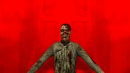 Gm zomb23v2