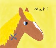 Mare-i1