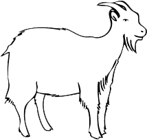 File:Goat.png