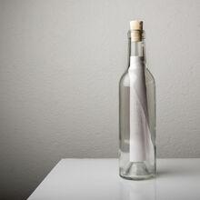 bottle large HQ 774ba1f5-488d-43c8-ba16-623d1efbb542 1024x1024