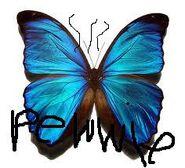 Pewwie butterfly