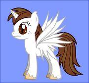TWR Pony