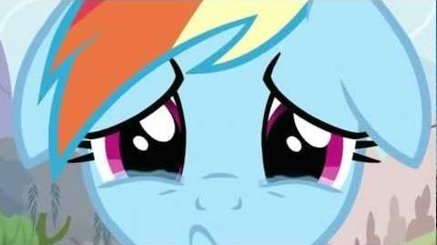 How could this happen to Dashie?