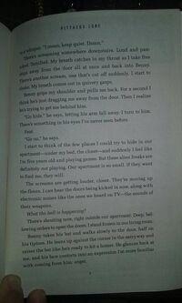 Excerpt11